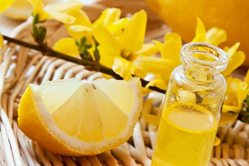 10 eteričnih olj, ki lahko osvetlijo vaš dan