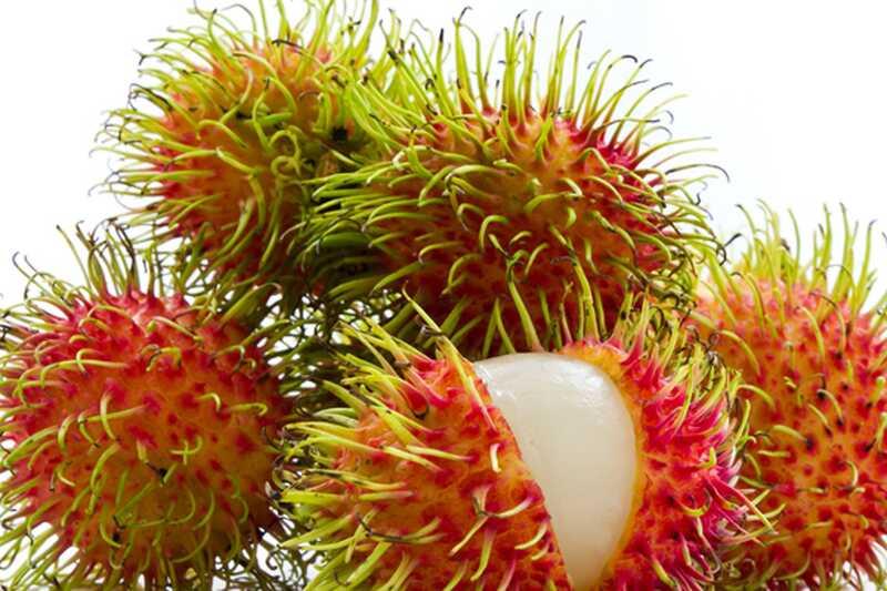 10 retkih egzotičnih plodova koje vredi pokušati