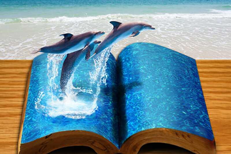 10 zaujímavých a chladných faktov o delfínoch