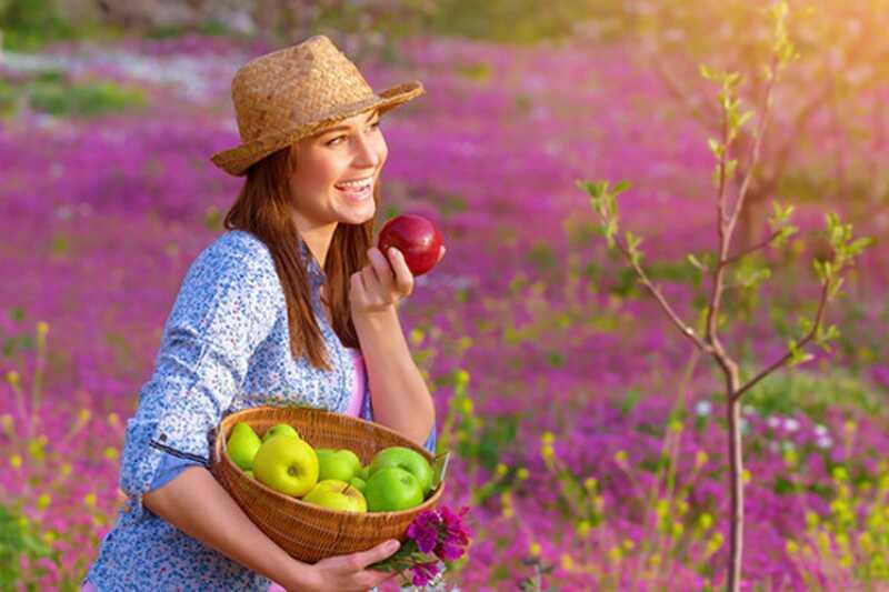 Katera država ima najboljšo prehrano na planetu? in kaj se lahko naučimo od njega?