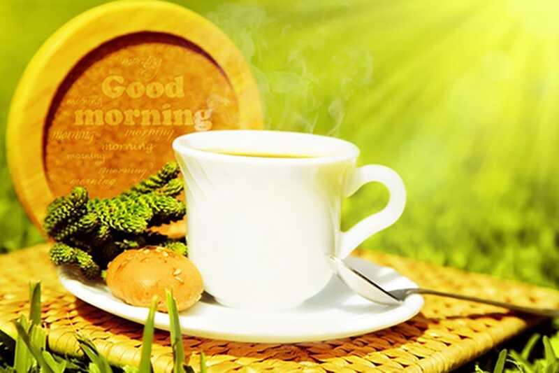 10 zanimljivih činjenica o čaju