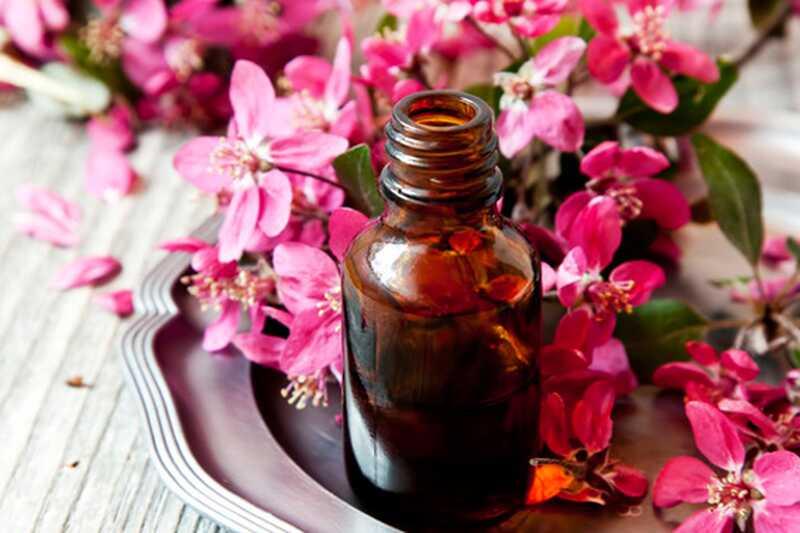 Kakšne so prednosti in koristi eteričnega olja geranije?