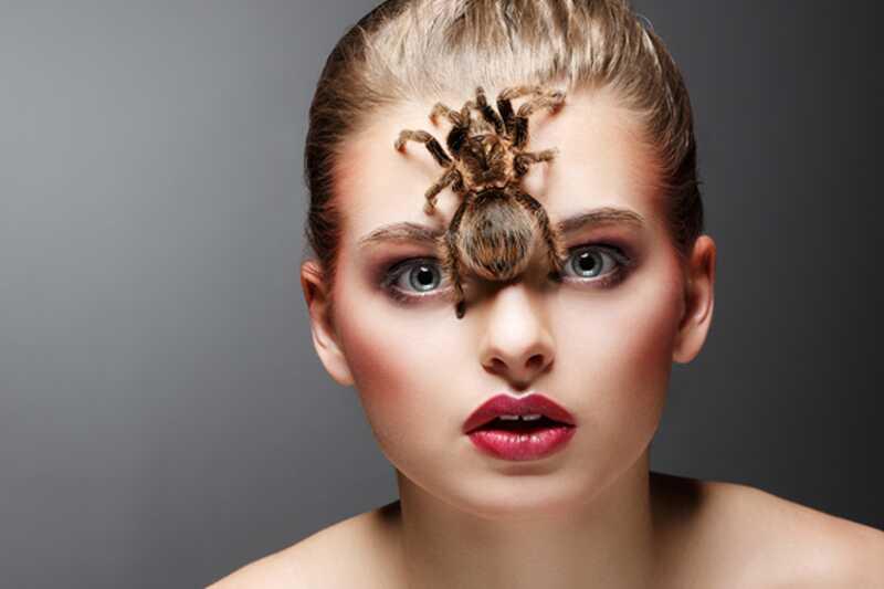 10 najbolj nadležnih žuželk na svetu