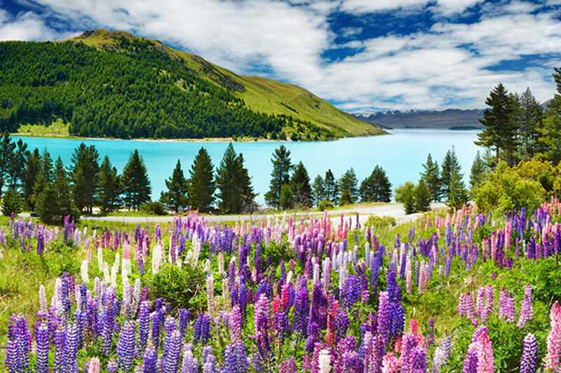 10 musí vědět nové tipy cestování z Zélandu