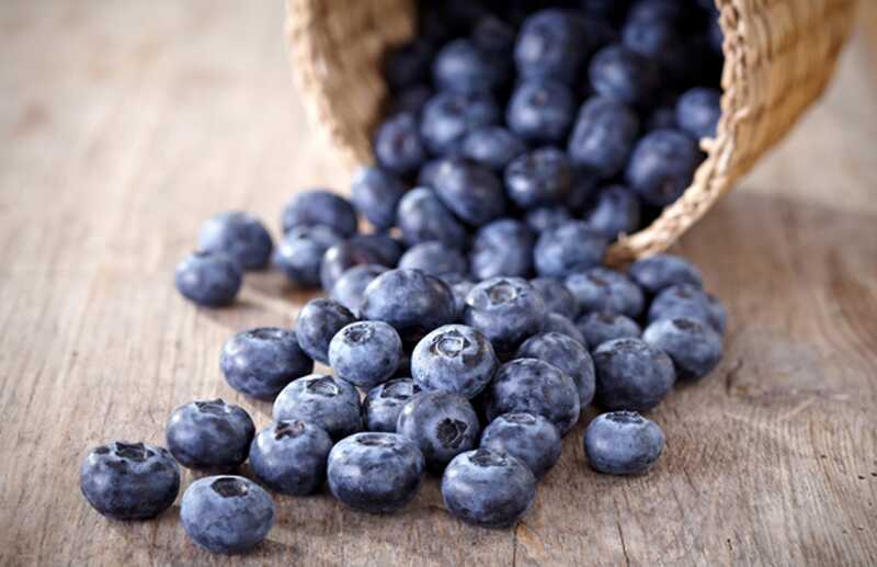 Top 10 antioxidant bogatih živil, ki jih morate vključiti v svojo prehrano