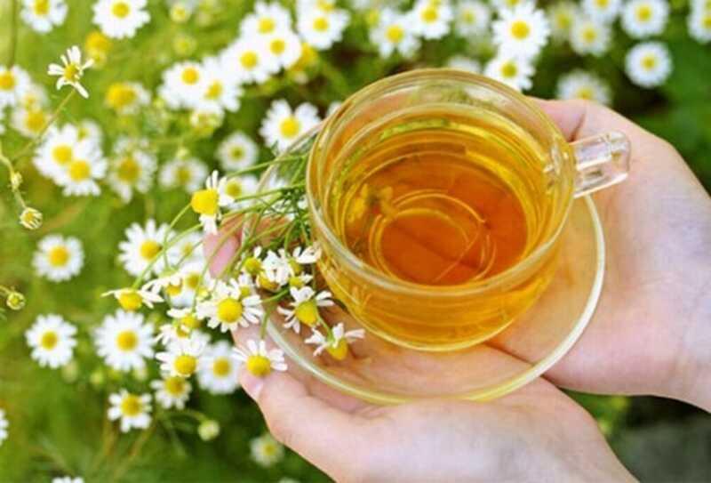 Top 10 kamille thee voordelen voor gezondheid, huid en haar